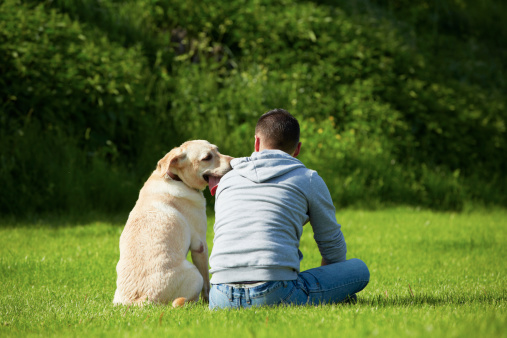 dog-and-man-on-grass