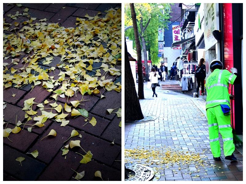 銀杏的黃灑在地上,清潔工人身穿高光奪目的工衣,在街上成為一景。