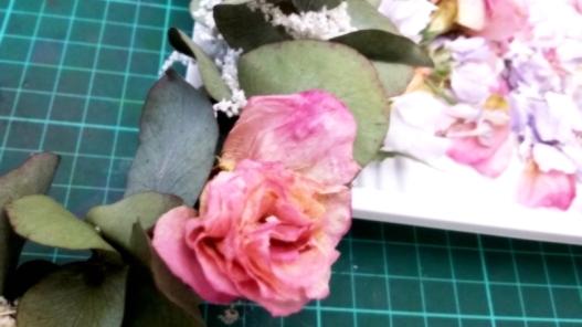 2016-03-22 17.26.47_副本.jpg