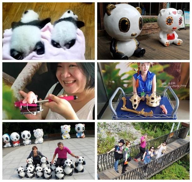 panda center 2.jpg